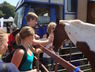 2012-A-13-Dunsterfair-Bild-007
