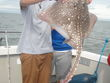 2012-B-19-Fishing-Bild-034